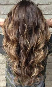 58 best highlight placement images on pinterest hairstyles hair