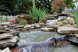 niagara falls in your own backyard nature u0027s accents