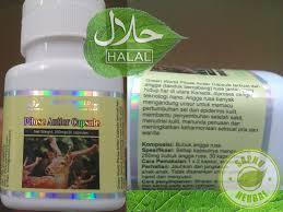 pilose antler capsule obat herbal untuk sistem syaraf fungsi