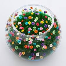 large bowl terrarium multicolored flowers terrariums by
