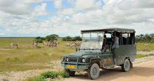Clothes To Wear On A Safari Safari In Chobe National Park Botswana Information For Your