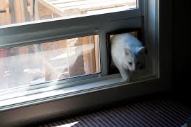 cat runs into glass door outdoor cat enclosure ikea hackers ikea hackers