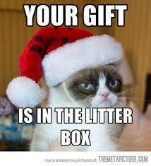 Angry Meme Cat - grumpy cat shows his generosity the meta picture