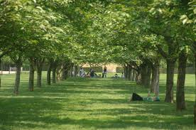 Prospect Park Botanical Garden Botanic Garden Nyc Parks
