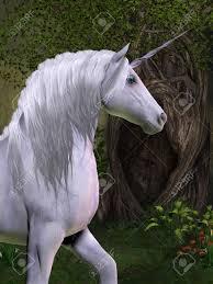 mystical unicorn stock photos royalty free mystical unicorn