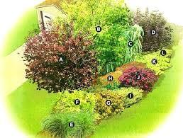Garden Shrubs Ideas Landscape Shrubs Ideas Landscaping Ideas For Front Yard Shrubs