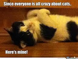 Crazy People Meme - you crazy cat people by saxn meme center