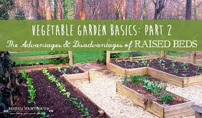 advantages and disadvantages of raised beds redeem your ground
