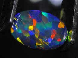 dark blue opal harlequin opal the rarest black opal pattern of them all black