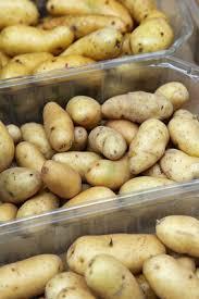 comment cuisiner les rattes du touquet cuisson de la pomme de terre ratte du touquet femmezine fr