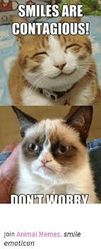 Smile Memes - 25 best memes about contagious meme and memes contagious