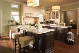 white kitchen ideas photos decorating charming kitchen storage ideas with elegant medallion