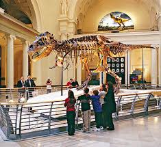 city vacation 10 things to do with in chicago illinois