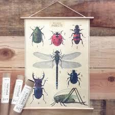 cavallini poster poster inpakpapier insect chart cavallini co meerleuks