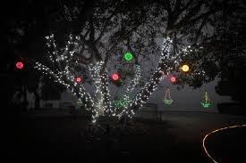 Botanical Gardens Christmas Lights by Photos Lights In Bloom Is Back And Ready To Get You Into The