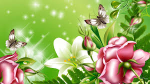 flowers wallpaper beautiful collection