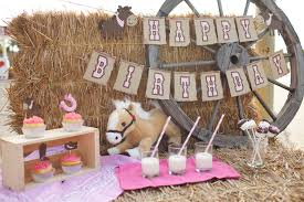 Farm Theme Baby Shower Decorations Cowgirl Birthday Party Package Giddy Up Pony Banner