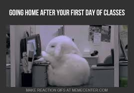 First Day Of Class Meme - home classes classesoptjpg 1132x500 amazing deluxe project on