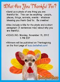 thanksgiving photo contest beliefnet buzzbeliefnet buzz