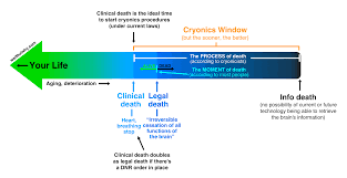 six principles of idea why cryonics makes sense wait but why