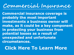 Car Insurance Port Charlotte Fl Port Charlotte Florida Insurance Agency