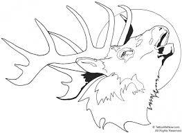 deer head coloring pages www allegiancewars www