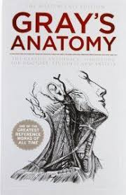 Saladin Anatomy And Physiology 6th Edition Online Anatomy U0026 Physiology The Unity Of Form And Function 6th Edition
