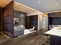 modern decor ideas for apartments grey color plush rug black gray