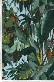 Papiers Peints Farrow And Ball 258 Best Wallpaper Images On Pinterest Wallpaper Jungles And