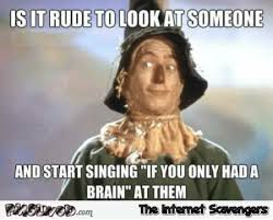 Funny Rude Memes - is it rude to look at someone and start singing if i had a brain