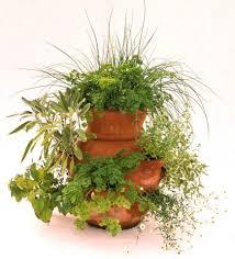 Vegetable Container Garden - enjoy a vegetable container garden midwest living