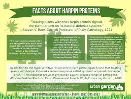 Urban Garden Supply - harpin proteins axiom research urban garden supply