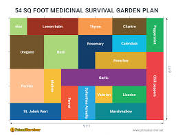 54 square foot medicinal garden plan
