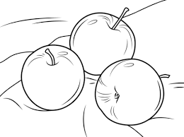 three apples coloring page free printable coloring pages