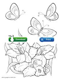 collection of solutions coloring pictures of flowers and
