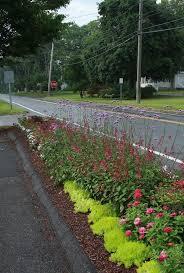 16 best easement images on pinterest backyard ideas landscaping