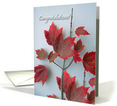 citizenship congratulations card congratulations on canadian citizenship maple leaves card 877608