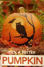 42 best pumpkin ideas images on pinterest halloween crafts