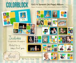 birthday photo album instant 12x12 baby boy year album template color