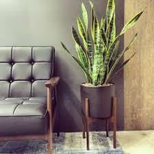 case study planter replica all storage iota fresco planters