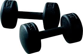Legacy Fitness Weight Bench Gym Equipment Workout Equipment U0026 Products York Barbell