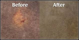 Upholstery In Orlando Fl Carpet Cleaning Orlando Fl Commercial Hotel Carpet Cleaning