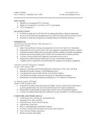 Resume Other Skills Examples by Accounting High Experience Resume Samples Vault Com