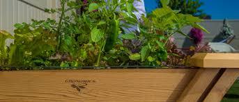 gronomics raised u0026 elevated garden beds