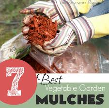 Best Type Of Mulch For Vegetable Garden - best mulch for garden using organic mulch in gardens types of