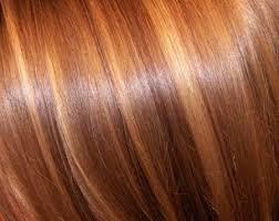 8 best light auburn hair wih golden highlights images on