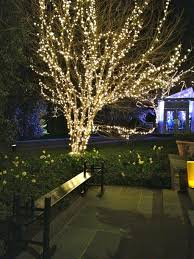 outdoor outdoor tree lights for summer led patio lights lights for