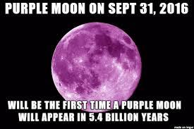 Full Moon Meme - purple moon meme on imgur