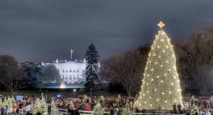 event history timeline national tree lighting