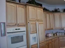 Kitchen Fridge Cabinet Counter Depth Refrigerators Questions House Remodeling